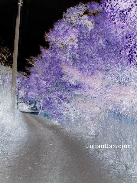 Este era el camino a Juliantla Por San Juan deDios!!