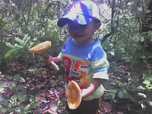 Byron Villa Alonso en La Tierra Colorada Juliantla Colectando los hongos de encino!